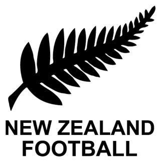 Resultado de imagen para logo nueva zelanda futbol png